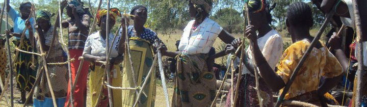 Tanzanian women building a fence.