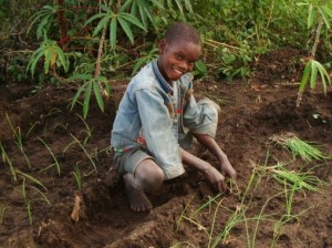 Young boy practicing permaculture.