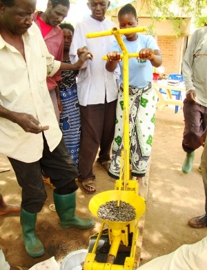 Group using Jatropha seed oil press.