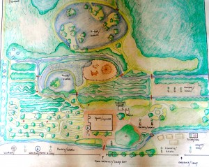 Design for Kinesi Village Permaculture Training Center